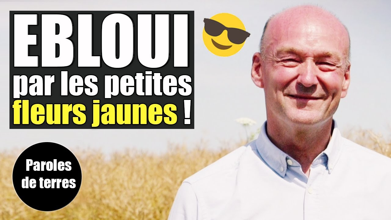Charles ingénieur Agro-alimentaire : son parcours Paroles de Terres - Saison 3