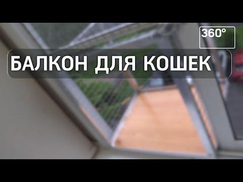 В Химках хозяин кота соорудил для любимца балкон