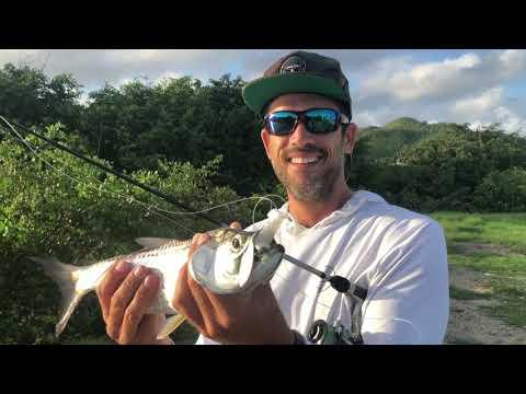 Fishing For Tarpon In Saint Martin