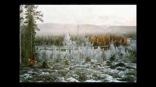 Bedrohtes Volk - Die Sámi
