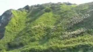 Лягушка-путешественница.._xvid.avi(Веселый ролик о моей жизни., 2011-08-04T20:36:24.000Z)