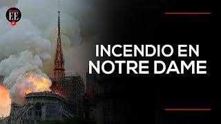 Incendio en Catedral de Notre Dame: se cae la aguja de la torre central | Noticia| El Espectador
