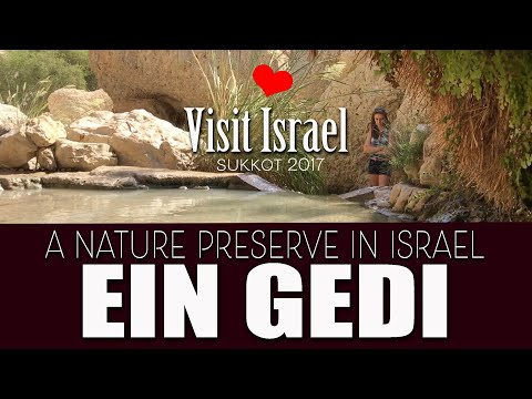 Ein Gedi Nature Reserve and National Park, 2017