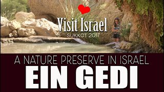 Ein Gedi Nature Reserve and National Park, 2017, Israel