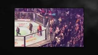 UFC 229 after fight brawl mcgregor-khabib