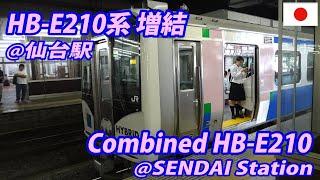 仙台駅・HB-E210系増結 Combined HB-E210 at SENDAI Station