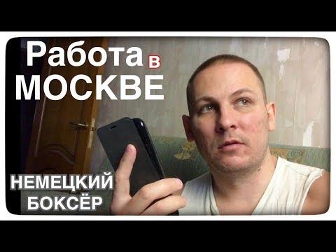 Работа в МОСКВЕ / Расклейщик объявлений / лохА ТРОН или реальность