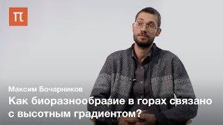 Ботаническое разнообразие гор — Максим Бочарников