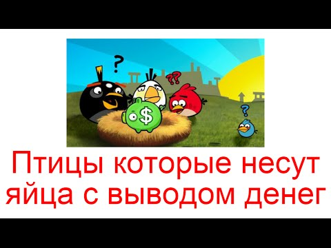 Птицы которые несут яйца с выводом денег, как играть