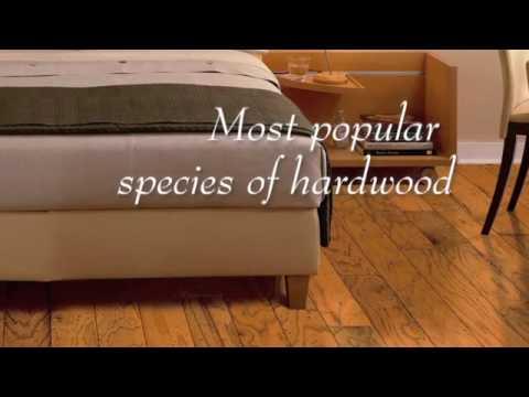 Oak Hardwood Flooring Westchester Ny 914 937 2950