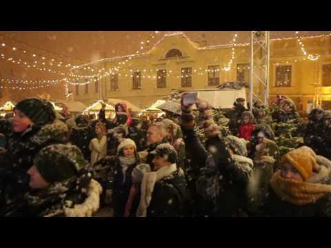 Klaipėdos kalėdinės eglės įžiebimas 2016 m.