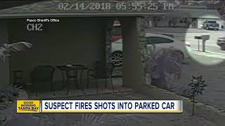 Deputies search for Port Richey drive-by shooter