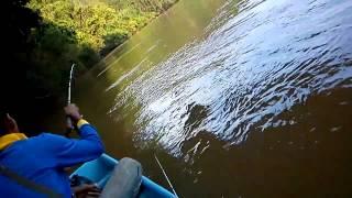 Mancing Ikan Pari Di Sungai Kuala Gris(part-1)
