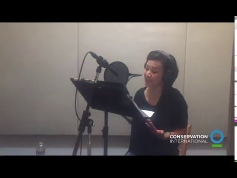 Nature Is Speaking – Behind the Scenes with Joan Chen | Conservation International