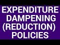 Expenditure-reducing policy