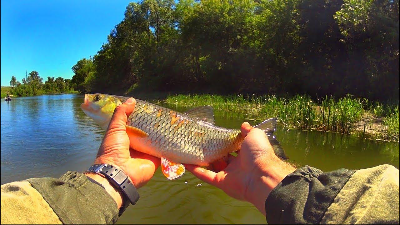 Рыбалка на река хопер