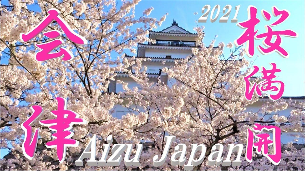 最新版 🌸会津若松 鶴ヶ城 桜満開!今が見頃マニアックに撮影 ! The Beautiful cherry Blossoms in Aizu Japan