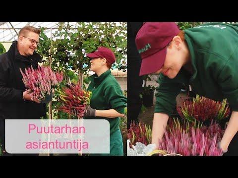Unelmiesi puutarhan suunnittelussa sinua auttaa Muhevainen!