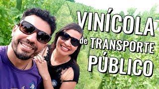 Viagem econômica Santiago do Chile: como visitar vinícolas de transporte público?