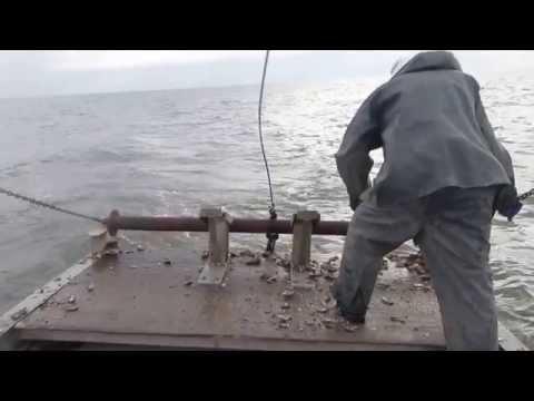 Oyster Dredging Delaware Bay Oct. 10 2014
