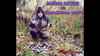 Рыбалка Ловим окуня на Ладожском озере