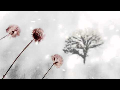 OST I'm Sorry I Love You - Snow Flower - Park Hyo Shin (눈의꽃 - 박효신)