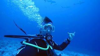 Faszination Tauchen - Mein Leben unter Wasser (Doku)