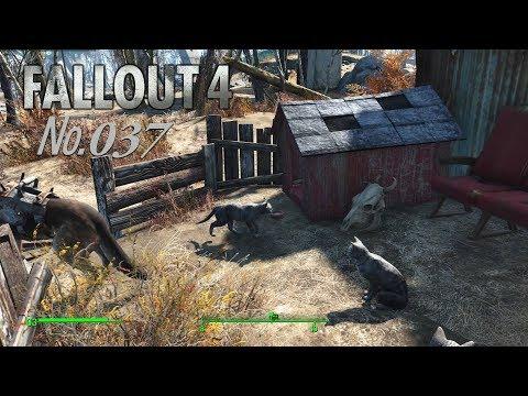 Fallout 4 s 37 На Юга