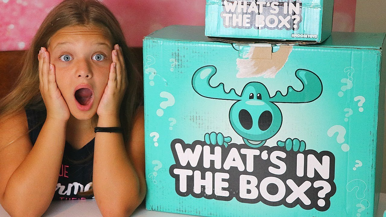 Whats In The Box Challenge Surprise Toys Mystery Box