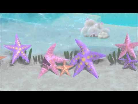 niloya deniz yildizi sarkisi