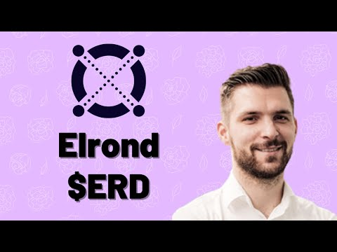 Elrond crypto review