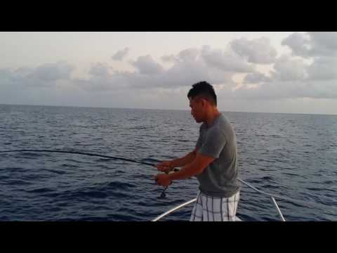 Florida welcome NY's bros Offshore Fishing 5