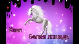 Клип белая лошадь