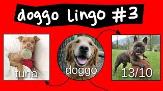 Doggo Chart - Part 3