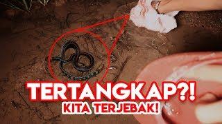 CARI ULAR BUAT PRANK DI SAWAH SEBELAH KUBURAN Ft. KOPLAK STORY