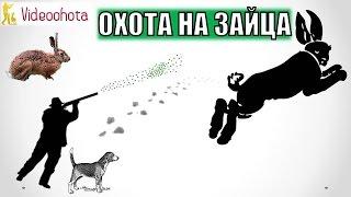 Охота на зайца! Самые ПОПУЛЯРНЫЕ способы - Videoohota