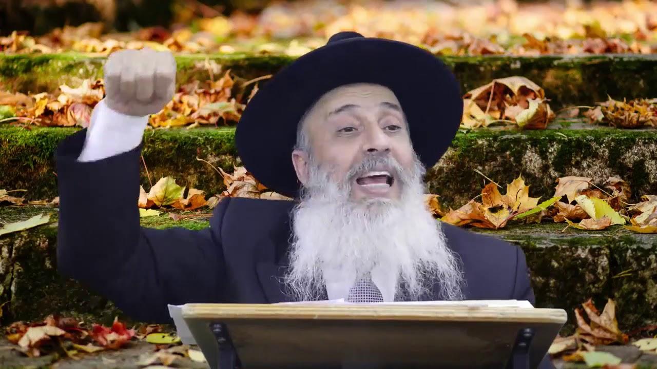 הכעס ותוצאותיו   הרב אברהם ברוך HD