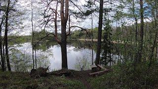 Путешествие за Щукой Два озера и две реки Рыбалка на щуку Ловля щуки Спиннинг 2020