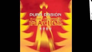 Video Banda Machos La Manguera download MP3, 3GP, MP4, WEBM, AVI, FLV Juli 2018