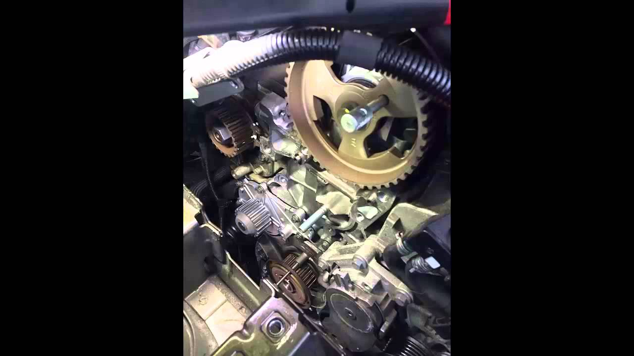 Timing Belt Replace Peugot Citroen 1 6 Diesel
