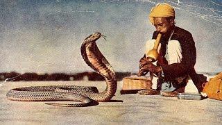 Snake Charmer Hip Hop Rap Instrumental