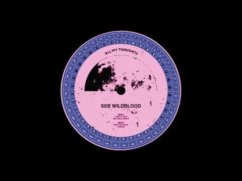 Seb Wildblood - Grab The Wheel