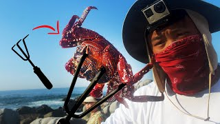 Catch your own fishing bait! NINJA CLAW VS JUMPING CRABS