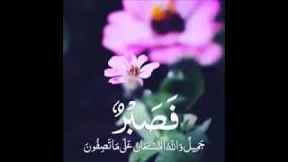 (فصبر جميل والله المستعان على ما تصفون)
