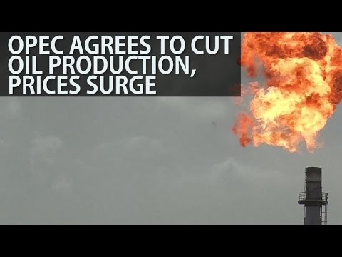 Opec Agrees To Cut Oil Production, Prices Surge