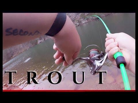 Trout Fishing W/ An Old Friend...