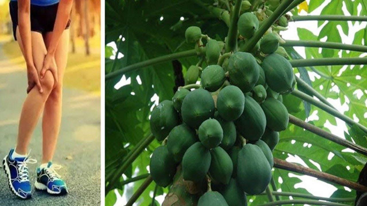 膝蓋病久治不癒?女性最喜歡的一種水果,治一個好一個!