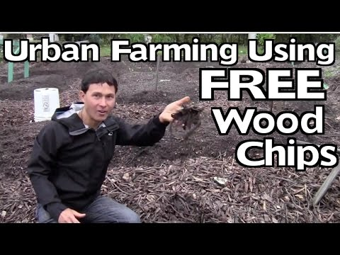Urban Farming Using Wood Chips to Create the Best Organic Fertilizer