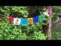 Printempa Piediro en Usono – Filmo por la Usona Bona Film-Festivalo