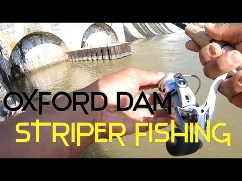 Oxford Dam, NC STRIPER FISHING